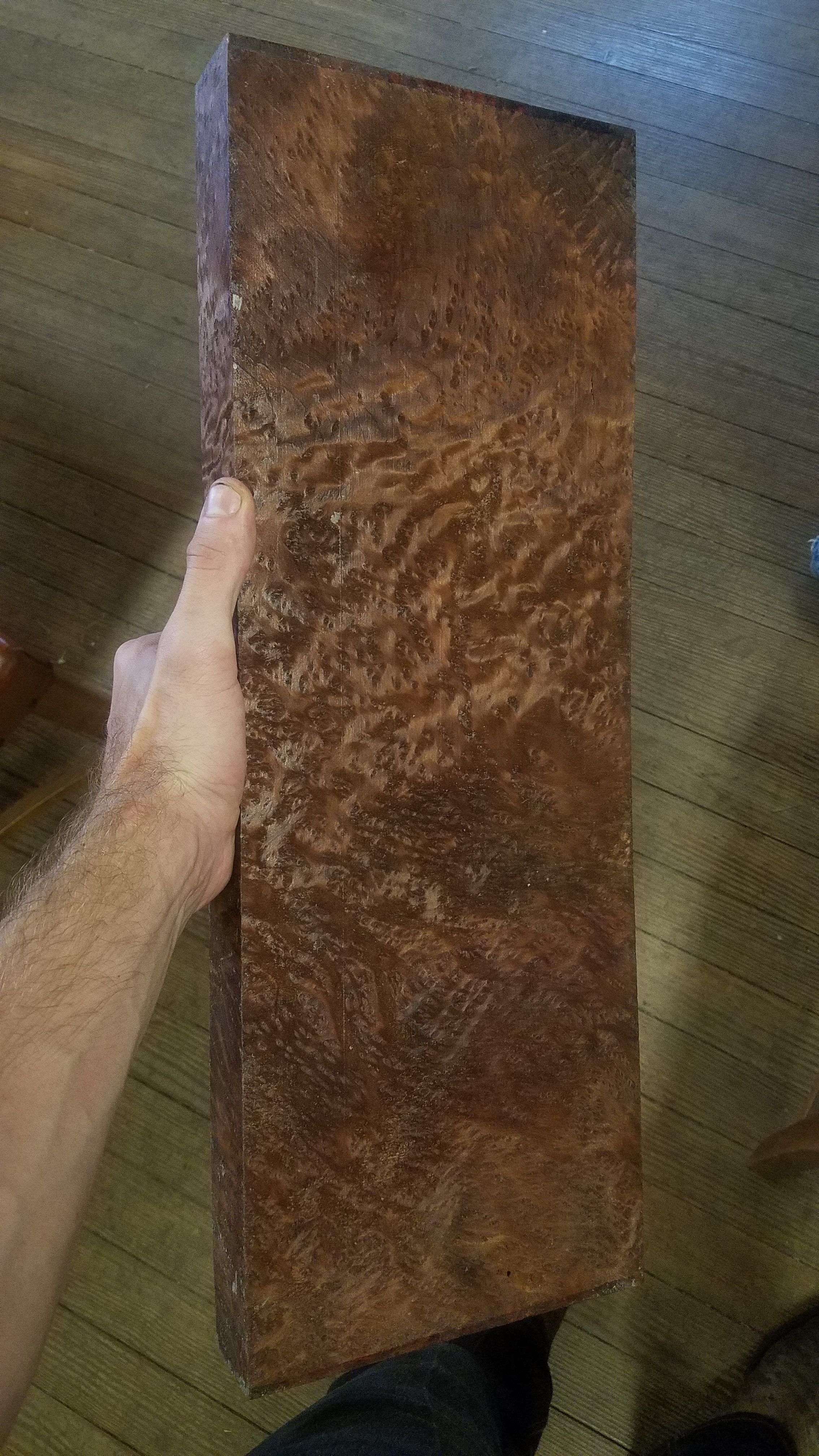 A piece of Red Wood Lace Burl for our custom 1911 grips